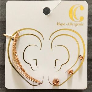 Charming Charlie rose gold earring set